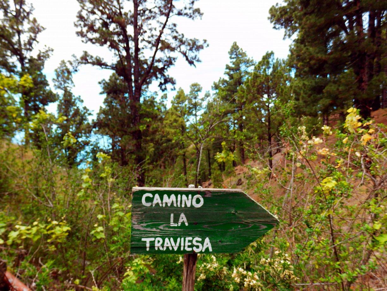 Wandelroute La Traviesa Prlp 10 op La Palma.